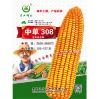 供应中单308玉米种子